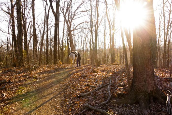 8. Mossy Ridge Trail - Nashville