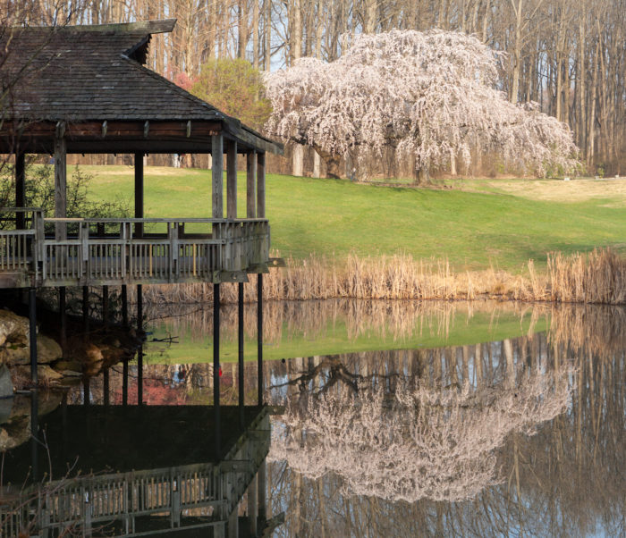 8. Brookside Gardens