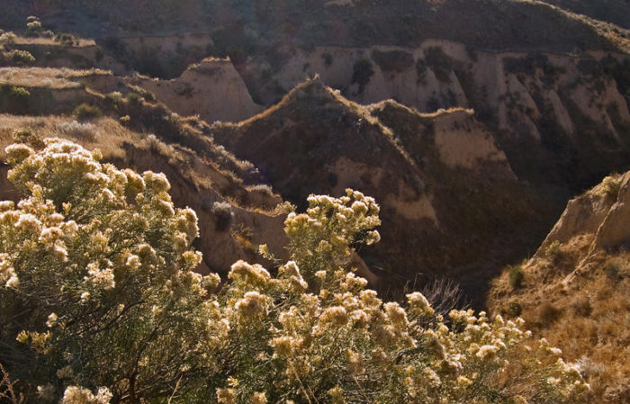 5. Arikaree Breaks (Cheyenne County)