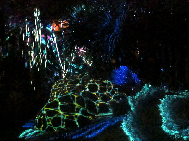 7. Take in Nightscape at Longwood Gardens.