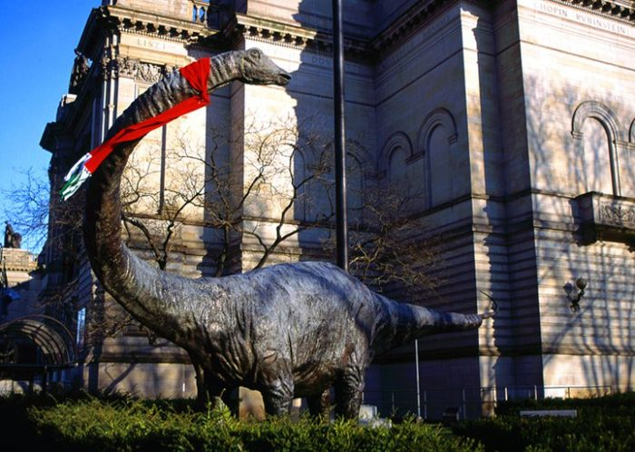 7. Carnegie Museum of Natural History