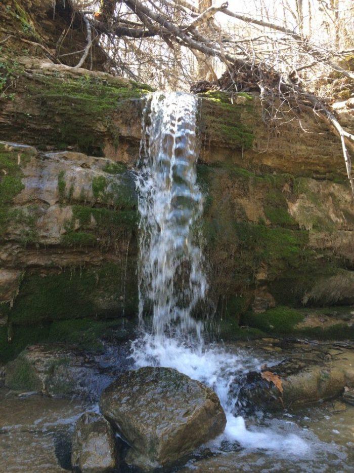 7. Raven Run Nature Sanctuary, Lexington