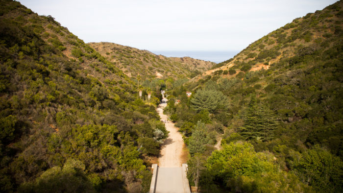 If you get tired of the majestic view of Avalon Bay (like that's going to happen) you can head to Wrigley Botanic Garden for a change of scenery. Enjoy this healthy walk along the way and burn off a few calories from all the fun you've been having.