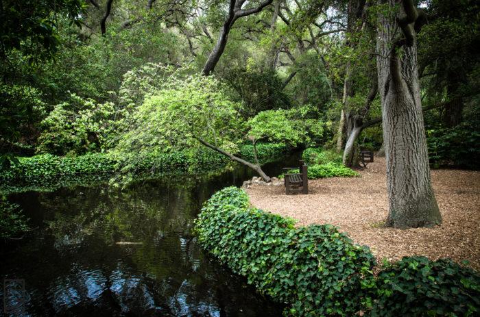 2. Descanso Gardens -- La Canada Flintridge