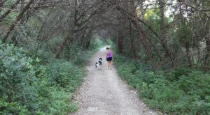 The Greenbelt is dog friendly.