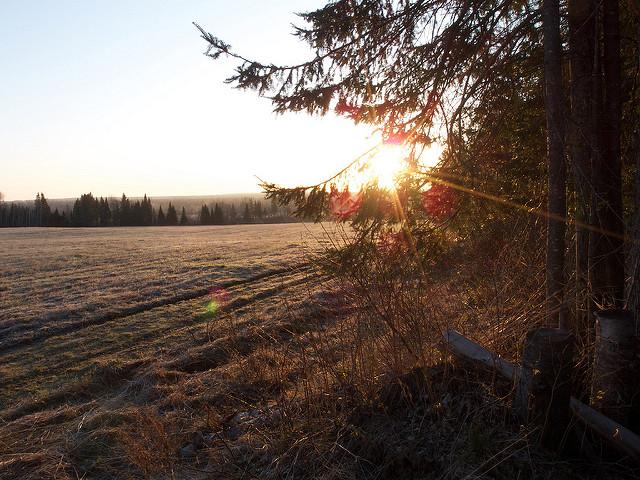 12. Masardis, Aroostook County