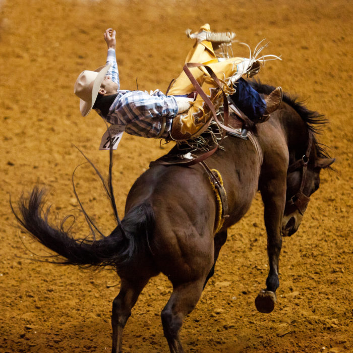 1. The Fort Worth Southwestern Exposition and Livestock Show is the longest running rodeo in the country.