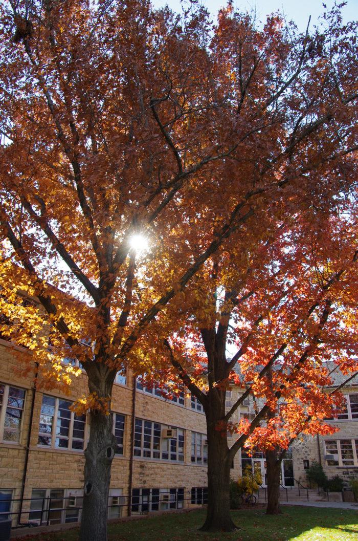 1. Kansas State University (Manhattan)