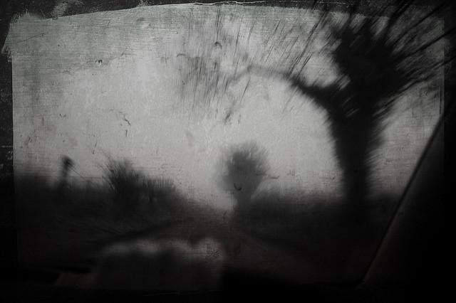8. Blue Mist Road
