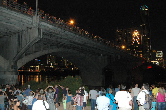 So, next time you're in Austin on a summer night, head over to the Congress Ave bridge to watch these incredible creatures put on an unforgettable show.