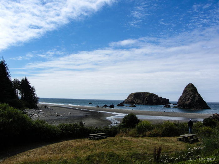 There are lots of great beaches to choose from, including the lovely Whaleshead Beach (pictured above).