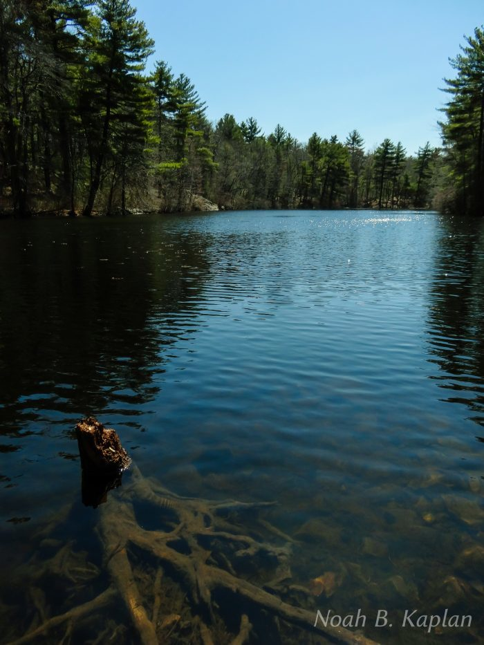 12. Long Pond, Middlesex Falls