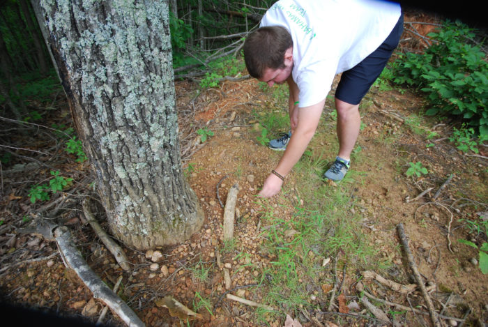 9. Search for fairy stones in Fairy Stone State Park.