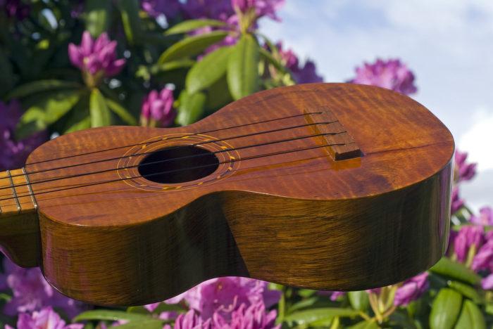 9. Had a ukulele jam session.