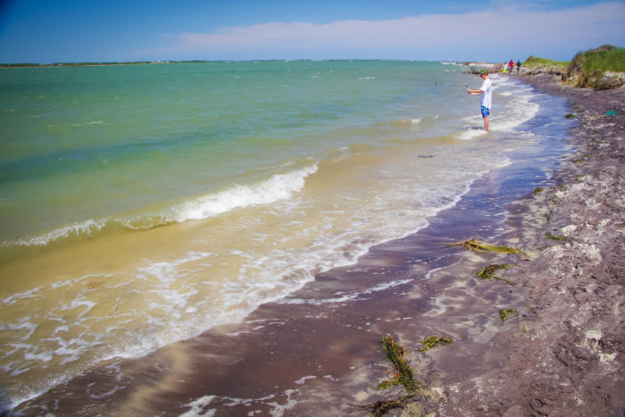 13. Get a Caribbean vibe along the Crystal Coast and see the clearest water in North Carolina at Shackleford Banks.