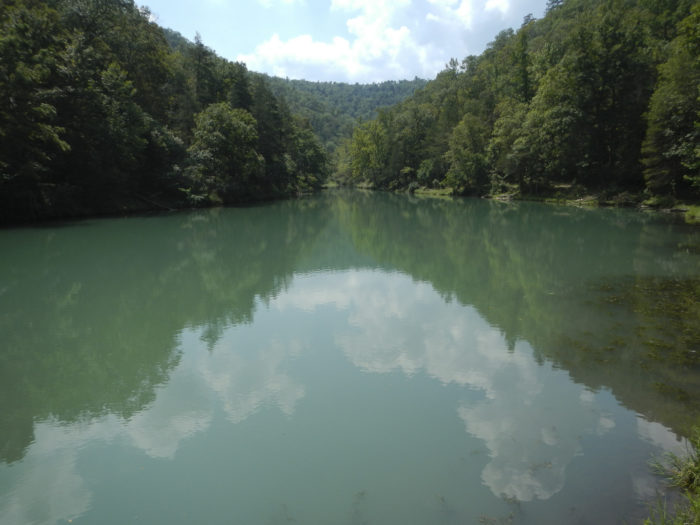 The lake really is a perfect mirror for the breathtaking forest that surrounds it.