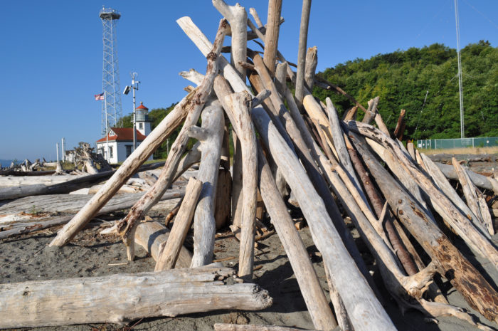 2. Driftwood Shelters