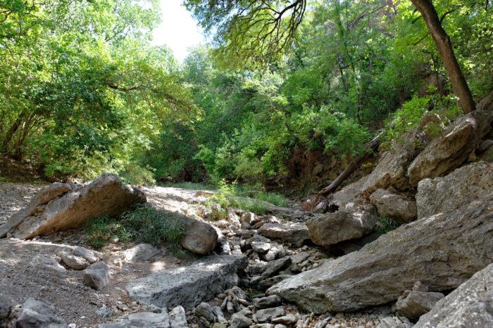 10. Shoal Creek Trail