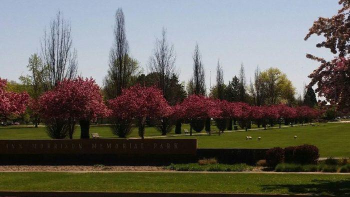 6. Ann Morrison Park, Boise
