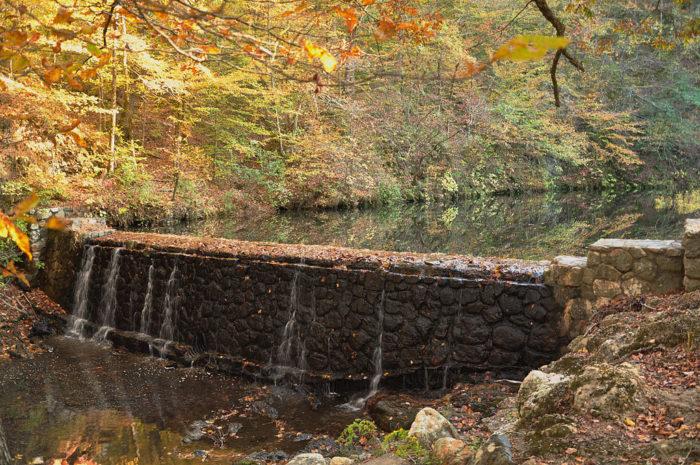 6. Bard Springs Dam Number 1 (Blaylock Creek)