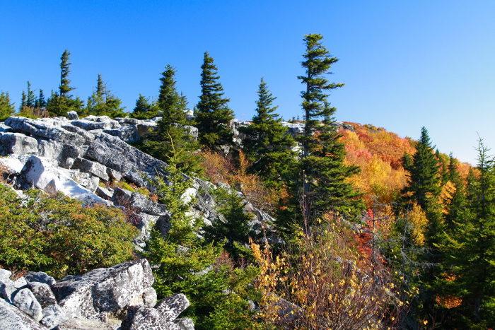 The Bear Rocks Preserve has incredible scenery.
