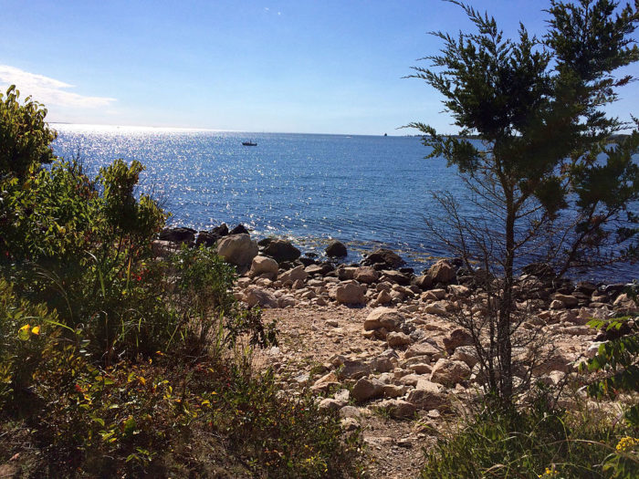 3. Bluff Point State Park (Groton)