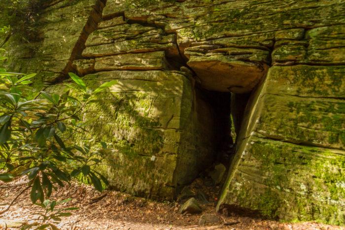 Coopers Rock Door