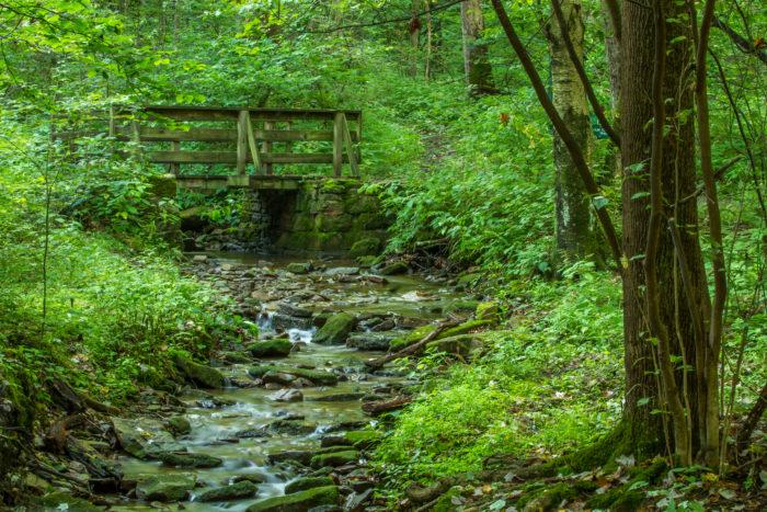 Coopers Small Bridge