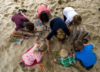 Your family will also be able to participate in excavating activities, such as the dino dig.