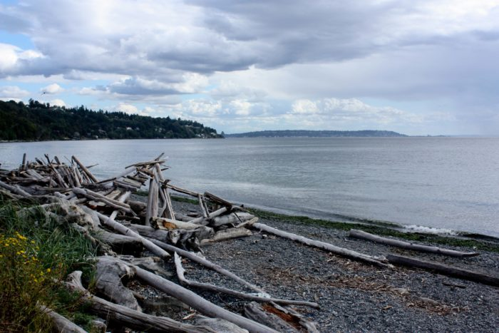 5. Discovery Park