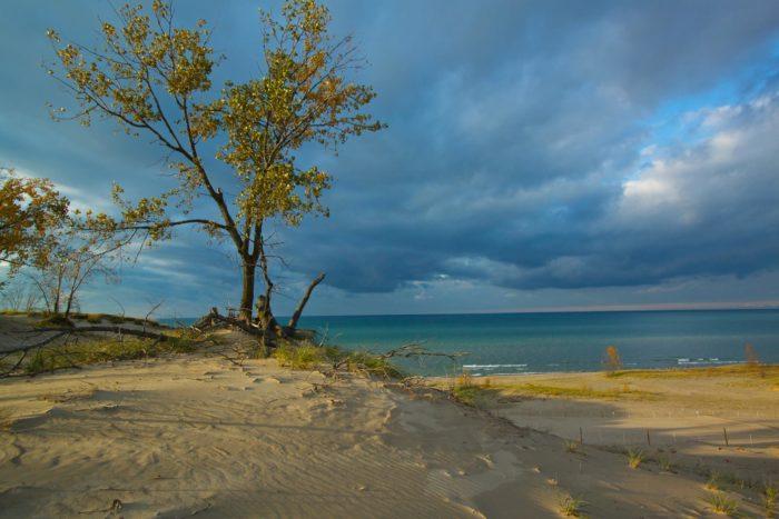 1. Dunes Nature Preserve - Chesterton