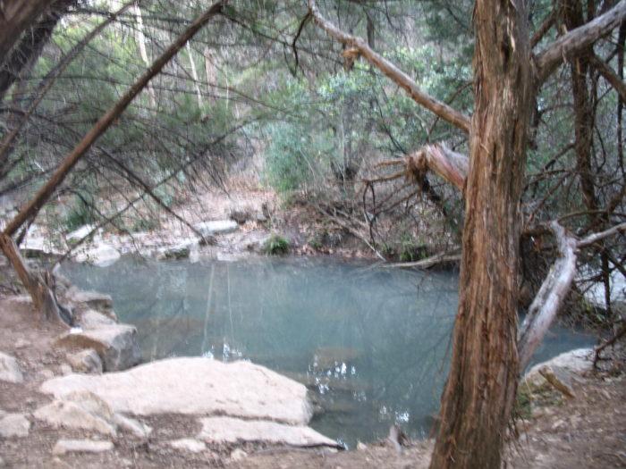 9. Turkey Creek Trail at Emma Long Park