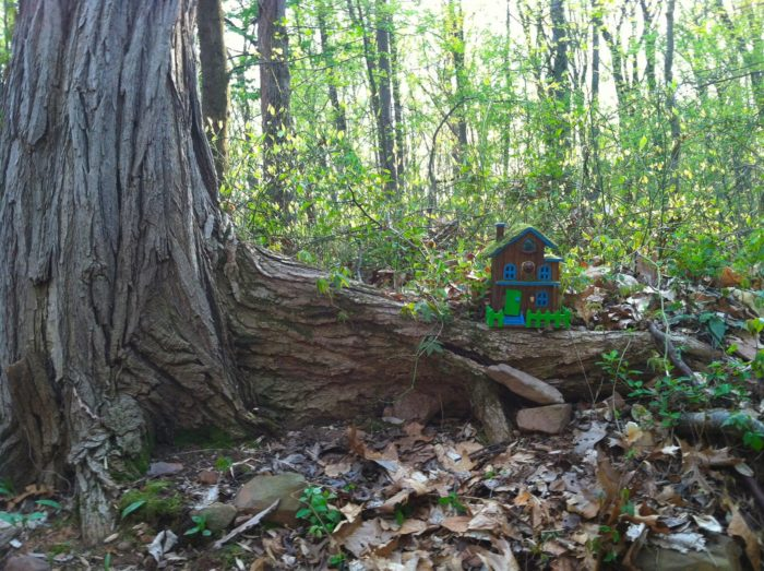 most people don u0026 39 t know new jersey has a fairy trail   and