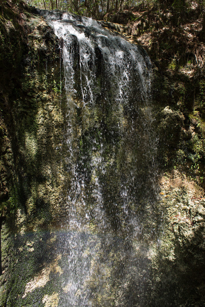1. Falling Waters State Park (Chipley)