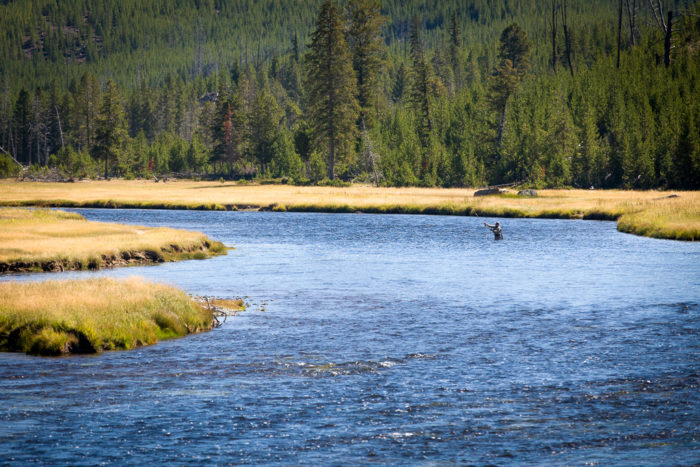 7. Go fly fishing in the Yellowstone River.
