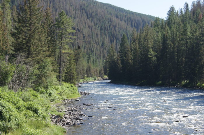 6.  The Gallatin River between Big Sky and Bozeman