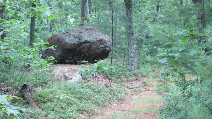 This large stone was actually deposited on the trail by a glacier during the last Ice Age.