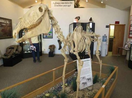 Of course, the Hagerman Fossil Beds and the accompanying museum are a unique part of Idaho's history.