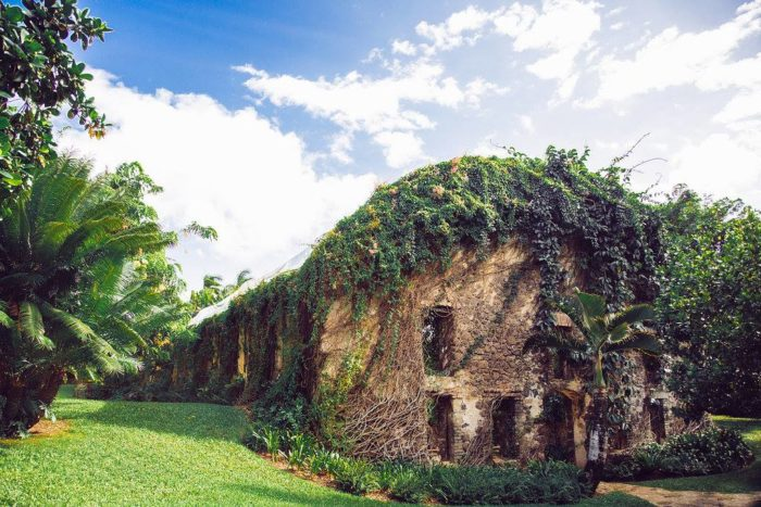 Built in 1858, the Haiku Mill was one of the first ten companies to go into the sugar business in Hawaii. The first crop was processed in 1861, and it was used as a processing factory for sugarcane until 1879, when the mill was abandoned for more than a century.