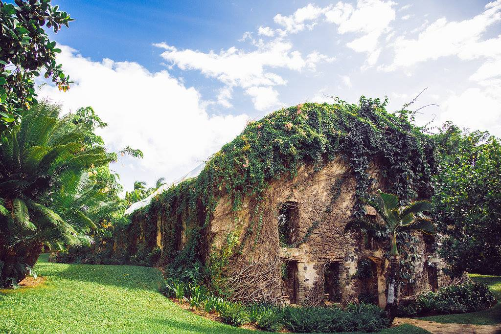Haiku Mill Is A Magical Hawaiian Fairytale