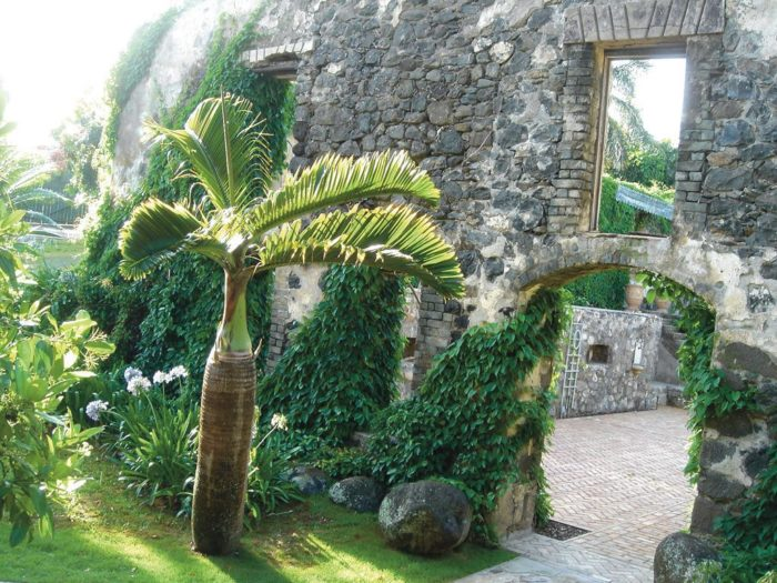 The mill's ruins were listed on the National Register of Historic Places in 1986. Today, all that remains of the Haiku Mill are vine-draped ruins, and it is used as a luxury wedding venue straight out of a fairytale - with French-inspired decor, and spectacular greenery.