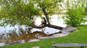 The 10 Best Places In Idaho To Go On An Unforgettable Picnic