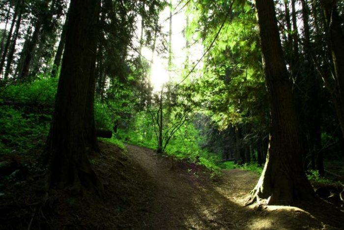 9. Idler's Rest Nature Preserve, Moscow
