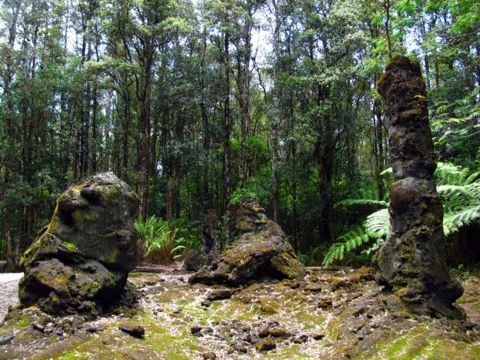 12. Lava Tree State Monument