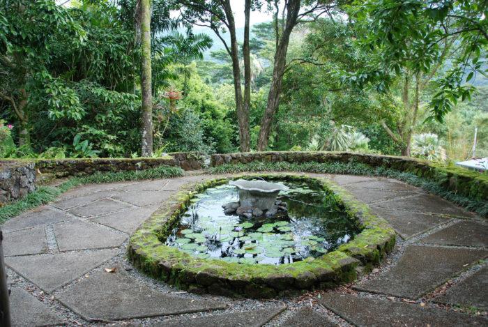 3. Lyon Arboretum