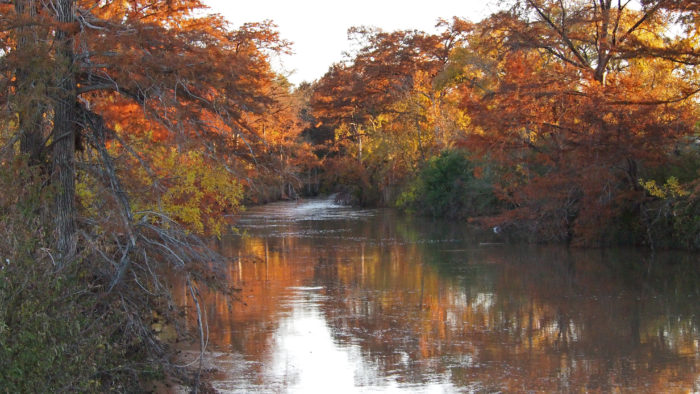 4. Experience McKinney Falls' stunning hiking trails.