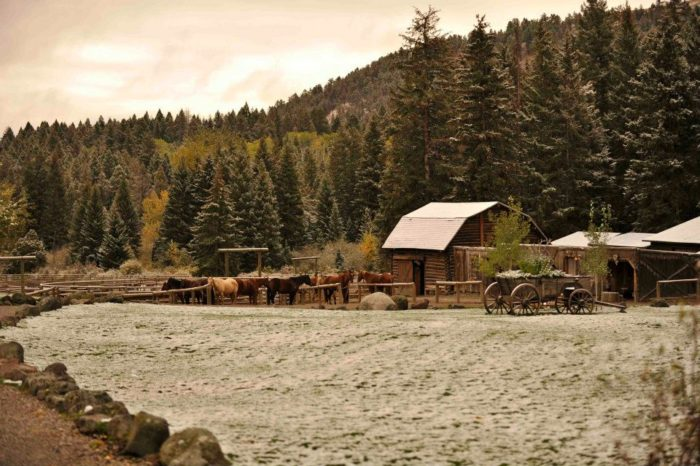 1. Mountain Sky Guest Ranch