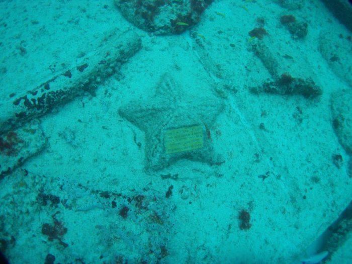 Neptune_memorial_reef_07
