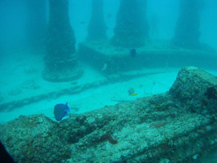 Neptune_memorial_reef_09