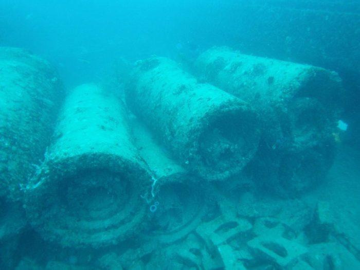 Neptune_memorial_reef_11